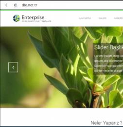 Enterprise - DLE 11.2