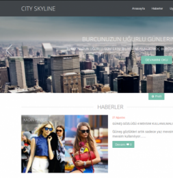 City Skyline Resposive - DLE 10.2