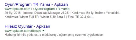 Google indexlerinde linklerin yapısı